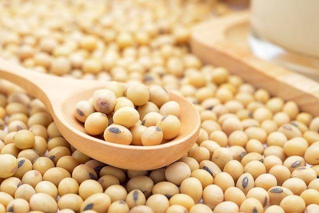 Gli ormoni bioidentici si sintetizzano anche dai fagioli di soia
